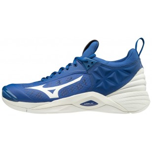 Mizuno Wave Momentum Men's Volleyball Shoe
